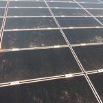 Solar/Photovoltaik Reinigung 27